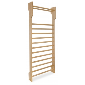 Gymnastic ladder 250x90x10-22
